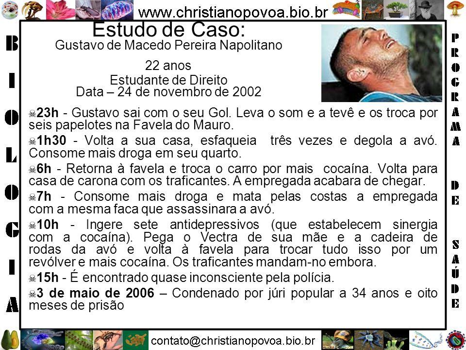 Estudo de Caso: Gustavo de Macedo Pereira Napolitano 22 anos Estudante de Direito Data – 24 de novembro de 2002 23h - Gustavo sai com o seu Gol. Leva