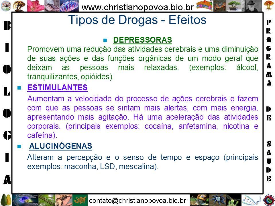 DEPRESSORAS Promovem uma redução das atividades cerebrais e uma diminuição de suas ações e das funções orgânicas de um modo geral que deixam as pessoa
