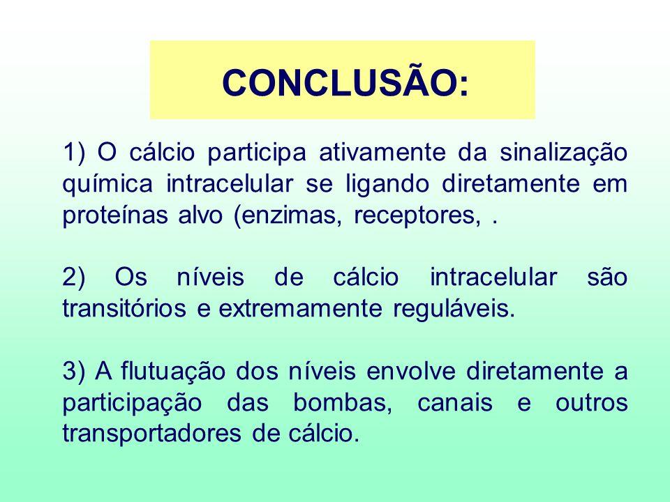 CONCLUSÃO: 1) O cálcio participa ativamente da sinalização química intracelular se ligando diretamente em proteínas alvo (enzimas, receptores,. 2) Os