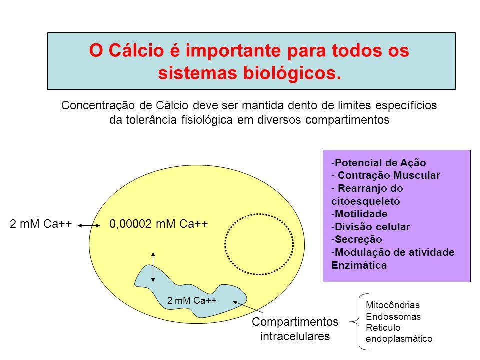 O Cálcio é importante para todos os sistemas biológicos. Concentração de Cálcio deve ser mantida dento de limites específicios da tolerância fisiológi