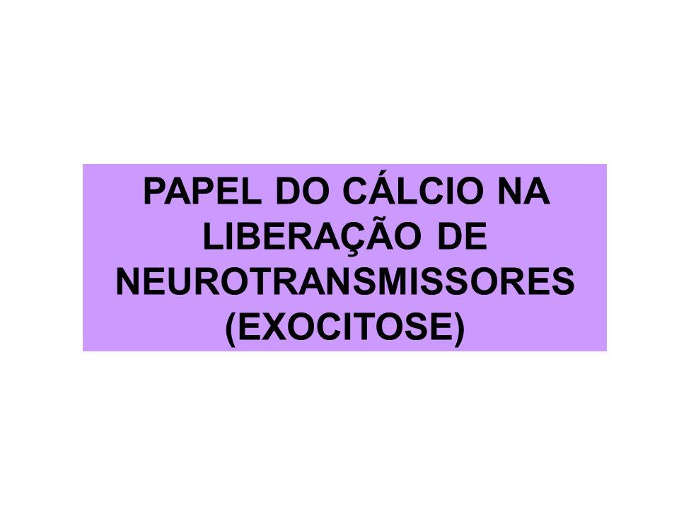 PAPEL DO CÁLCIO NA LIBERAÇÃO DE NEUROTRANSMISSORES (EXOCITOSE)