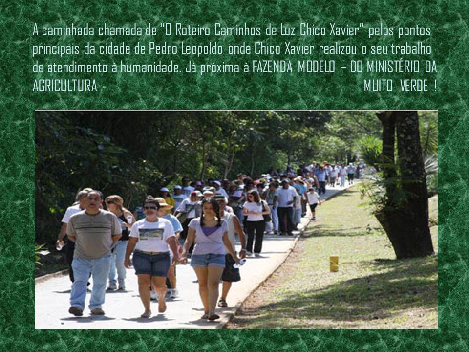 Este roteiro foi instituído pela Fundação Cultural Chico Xavier em 2 de julho de 2005 para marcar os pontos mais significativos da vida do médium, qua