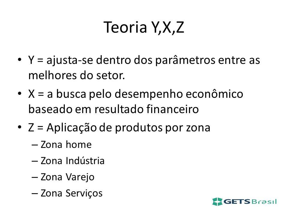 Teoria Y,X,Z Y = ajusta-se dentro dos parâmetros entre as melhores do setor. X = a busca pelo desempenho econômico baseado em resultado financeiro Z =