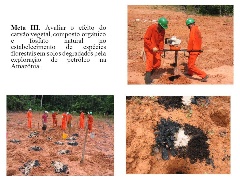 Meta III. Avaliar o efeito do carvão vegetal, composto orgânico e fosfato natural no estabelecimento de espécies florestais em solos degradados pela e