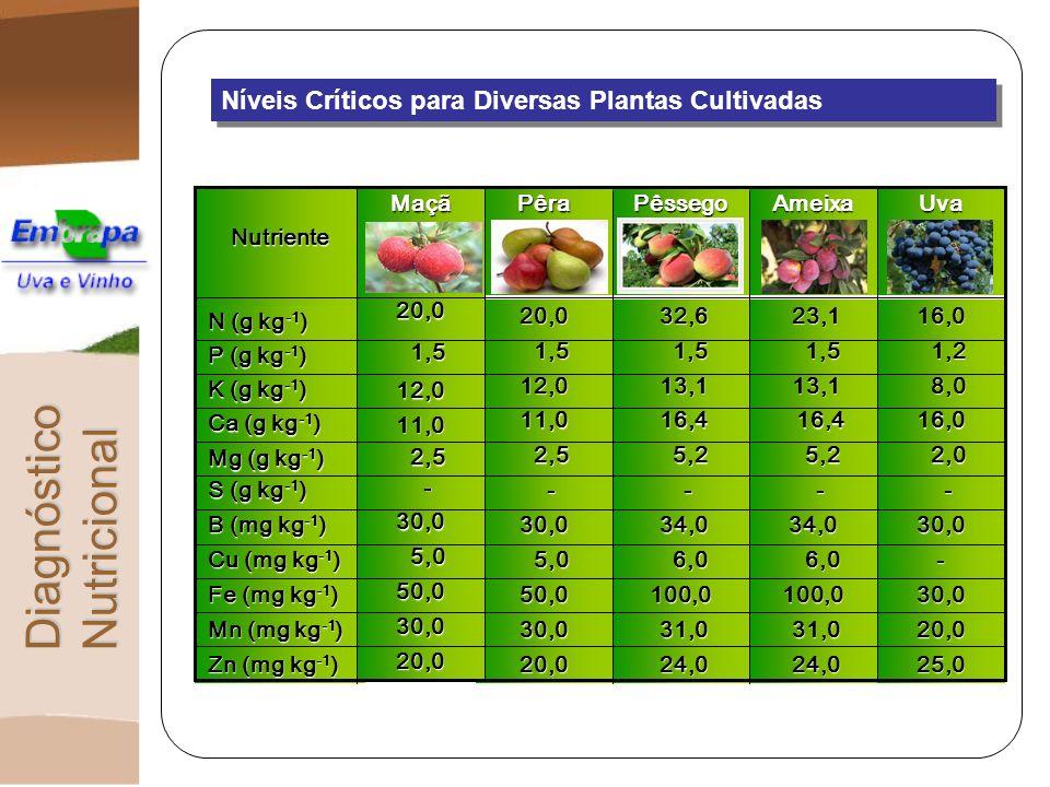 Níveis Críticos para Diversas Plantas Cultivadas DiagnósticoNutricional 25,0 24,0 24,0 20,0 Zn (mg kg -1 ) Zn (mg kg -1 ) 20,0 31,0 31,0 30,0 Mn (mg k