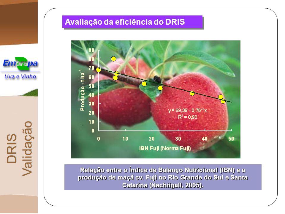 Avaliação da eficiência do DRIS DRIS Validação Relação entre o Índice de Balanço Nutricional (IBN) e a produção de maçã cv. Fuji no Rio Grande do Sul