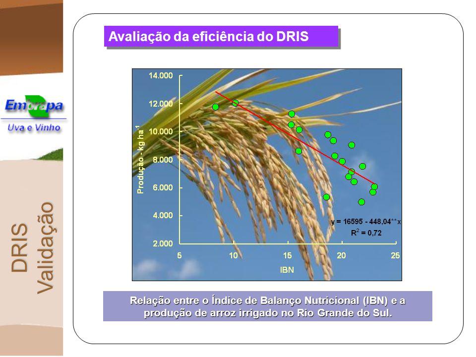 Avaliação da eficiência do DRIS DRIS Validação Relação entre o Índice de Balanço Nutricional (IBN) e a produção de arroz irrigado no Rio Grande do Sul