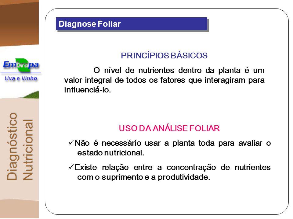 DiagnósticoNutricional Diagnose Foliar PRINCÍPIOS BÁSICOS O nível de nutrientes dentro da planta é um valor integral de todos os fatores que interagir