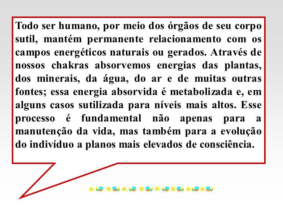 Todo ser humano, por meio dos órgãos de seu corpo sutil, mantém permanente relacionamento com os campos energéticos naturais ou gerados. Através de no
