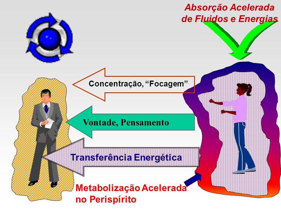 Absorção Acelerada de Fluidos e Energias Concentração, Focagem Vontade, Pensamento Transferência Energética Metabolização Acelerada no Perispírito