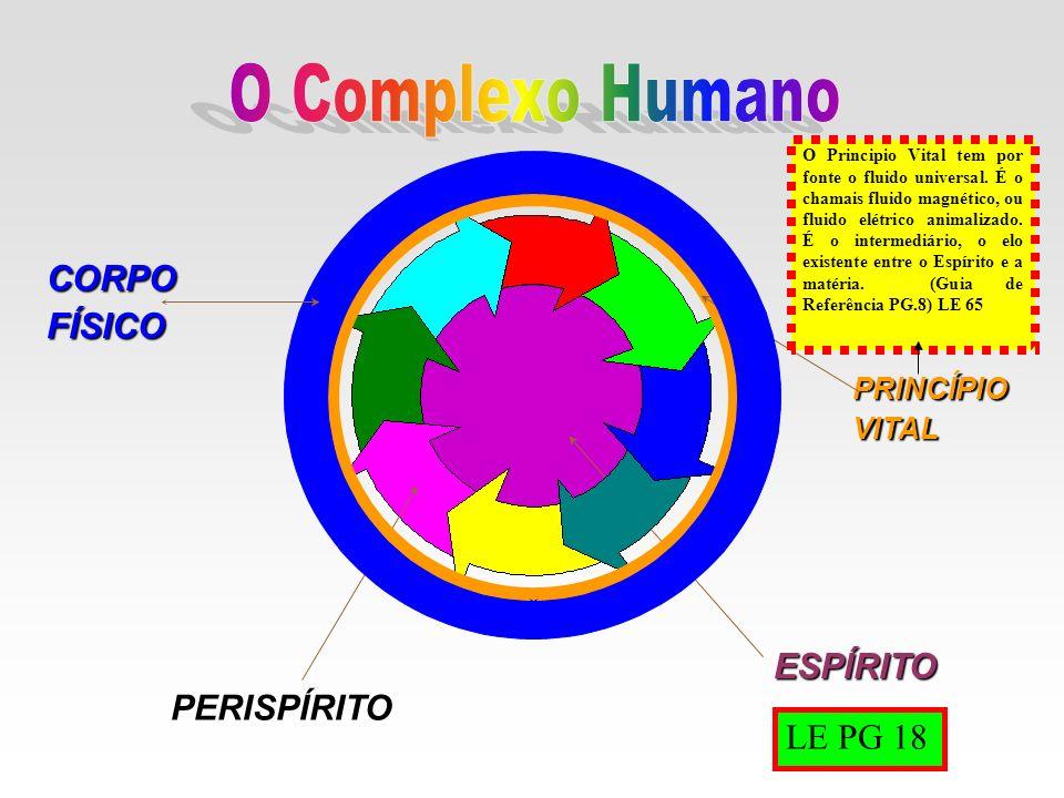 ESPÍRITO PERISPÍRITO PRINCÍPIOVITAL CORPOFÍSICO O Principio Vital tem por fonte o fluido universal. É o chamais fluido magnético, ou fluido elétrico a