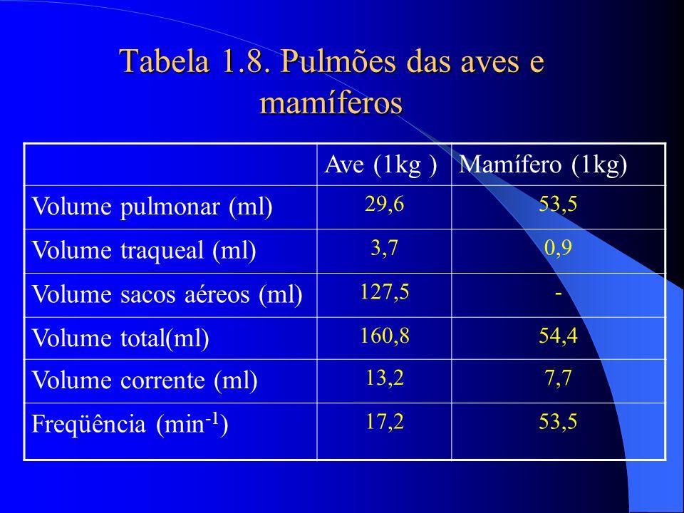 Tabela 1.8. Pulmões das aves e mamíferos Ave (1kg )Mamífero (1kg) Volume pulmonar (ml) 29,653,5 Volume traqueal (ml) 3,70,9 Volume sacos aéreos (ml) 1