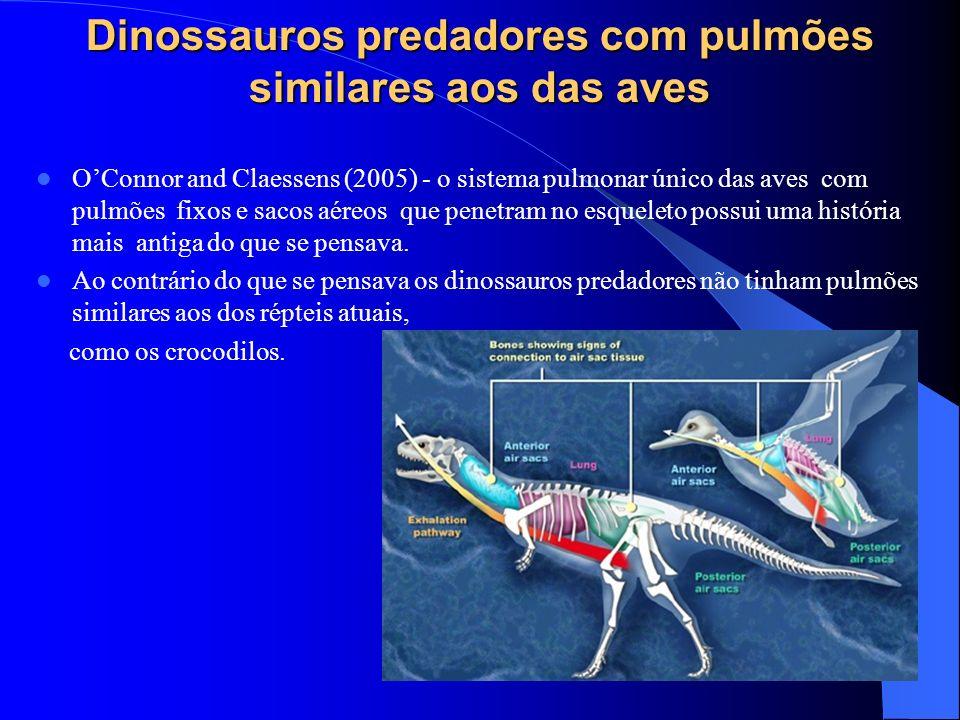 Dinossauros predadores com pulmões similares aos das aves OConnor and Claessens (2005) - o sistema pulmonar único das aves com pulmões fixos e sacos a
