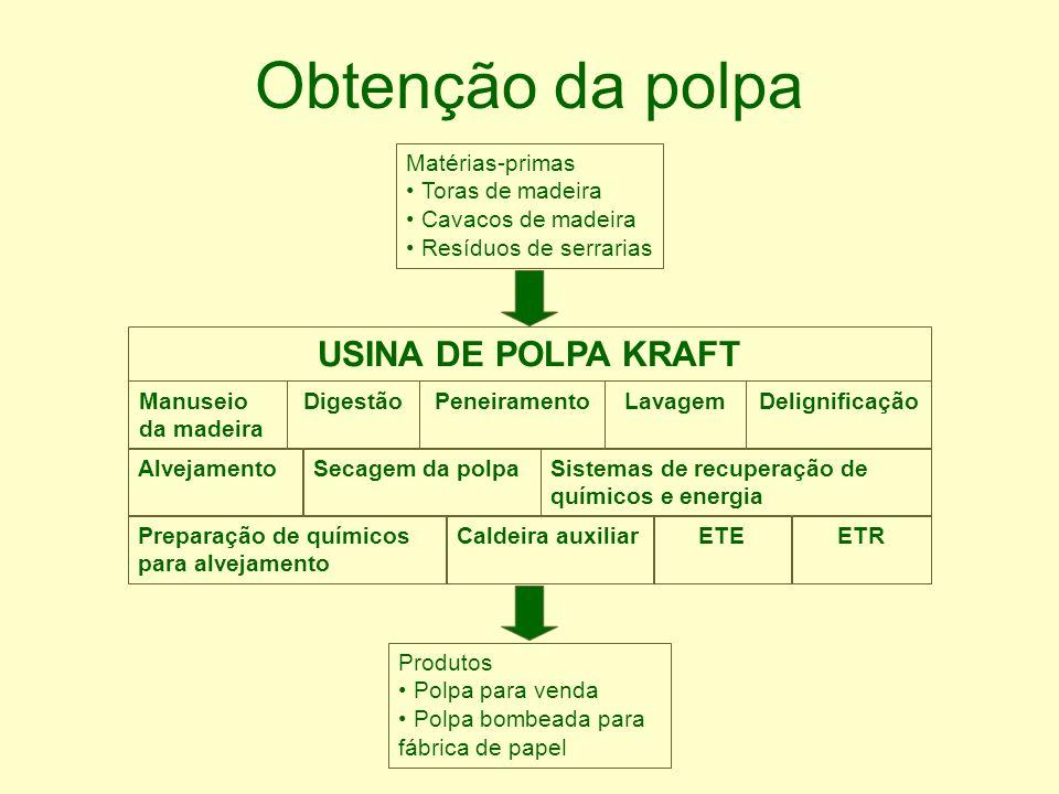 Obtenção da polpa Matérias-primas Toras de madeira Cavacos de madeira Resíduos de serrarias Produtos Polpa para venda Polpa bombeada para fábrica de p