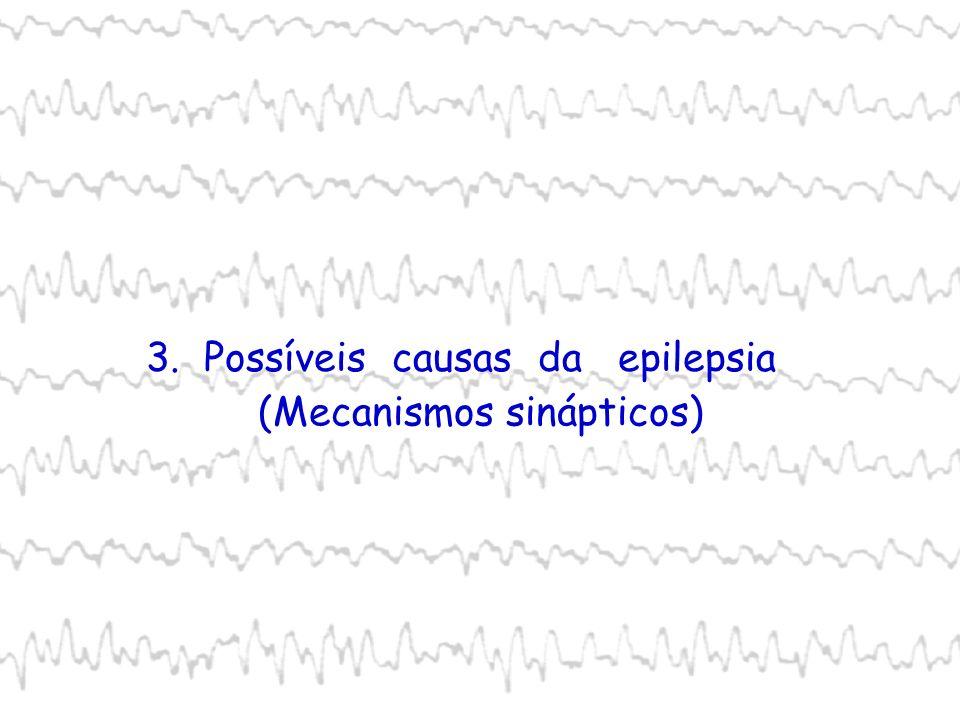 3. Possíveis causas da epilepsia (Mecanismos sinápticos)