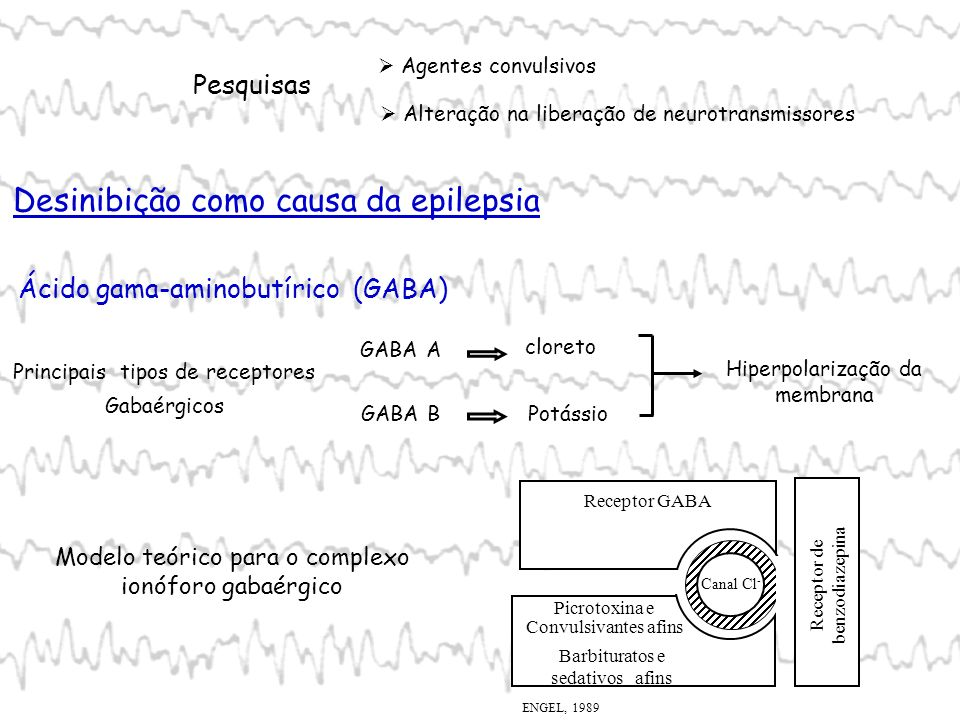 Efeito antagonizado: picrotoxina, bicuculina e penilicilina Liberação reduzida de GABA Alteração da concentração de Cl - Reduzido número de neurônios gabaérgicos Drogas antiepiléticas Inibem a ação da enzima GABA-trasaminase (GABA-T)