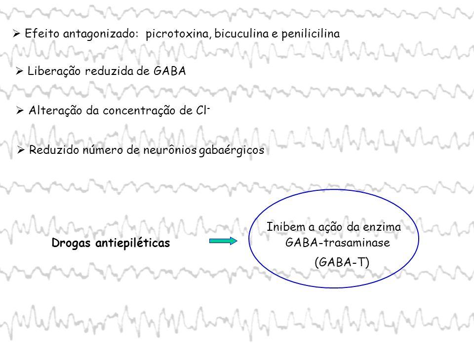 Efeito antagonizado: picrotoxina, bicuculina e penilicilina Liberação reduzida de GABA Alteração da concentração de Cl - Reduzido número de neurônios