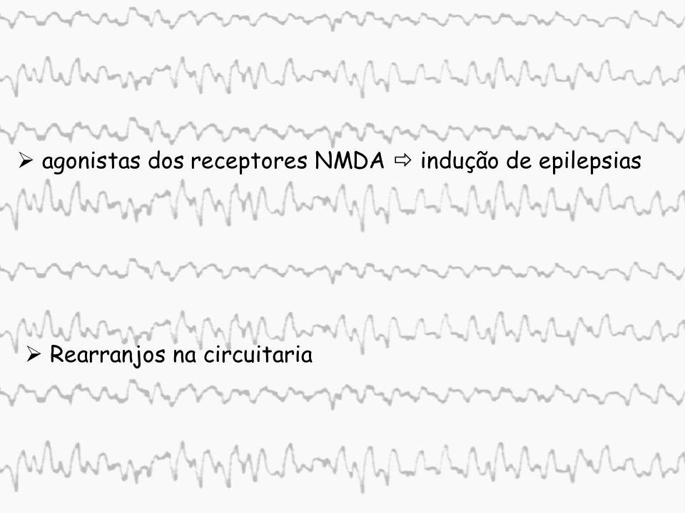 1.Corrente de sódio Densidade de corrente (mA/cm 2 ) Tempo(ms) Corrente de sódio WEISS, 1997 -0,4 0 0,4 Ativação rápida Inativação lenta Bloqueio Disparo de Bursts Participação de corrente iônicas nos mecanismos epileptogênicos despolarizações prolongadas Amplificadores intrínsecos de pós-potenciais excitatórios pós-potencias de despolarização