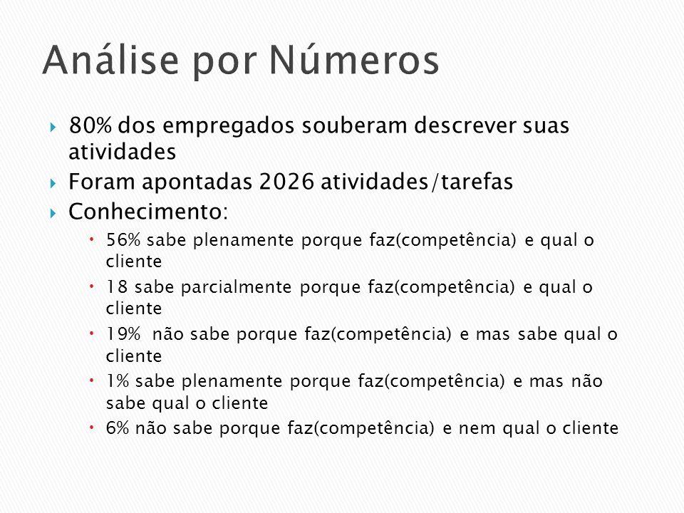 Análise por Números 80% dos empregados souberam descrever suas atividades Foram apontadas 2026 atividades/tarefas Conhecimento: 56% sabe plenamente po