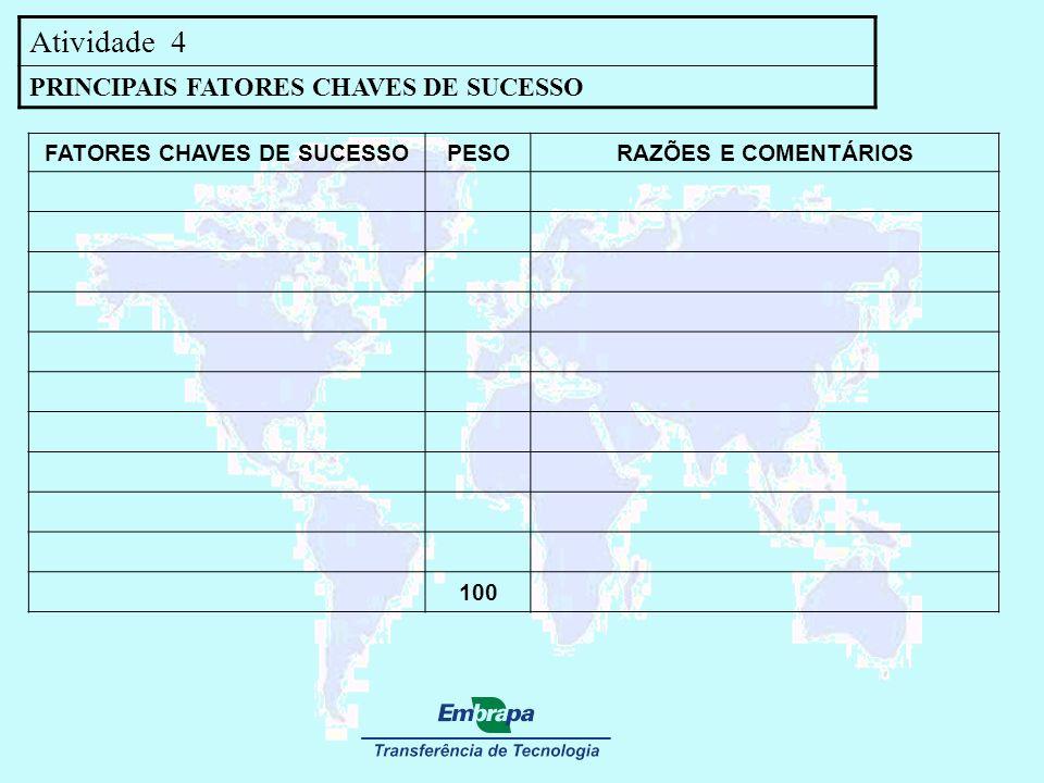Atividade 4 PRINCIPAIS FATORES CHAVES DE SUCESSO FATORES CHAVES DE SUCESSOPESORAZÕES E COMENTÁRIOS 100