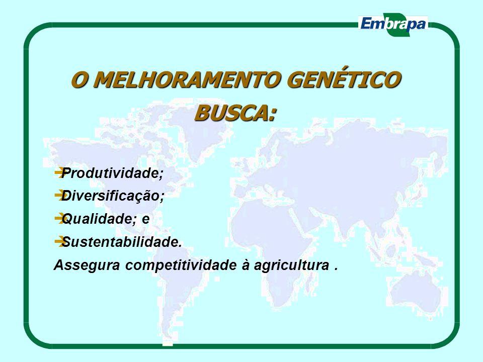 O MELHORAMENTO GENÉTICO BUSCA: Produtividade; Diversificação; Qualidade; e Sustentabilidade. Assegura competitividade à agricultura.
