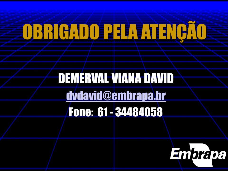 OBRIGADO PELA ATENÇÃO DEMERVAL VIANA DAVID dvdavid@embrapa.br Fone: 61 - 34484058