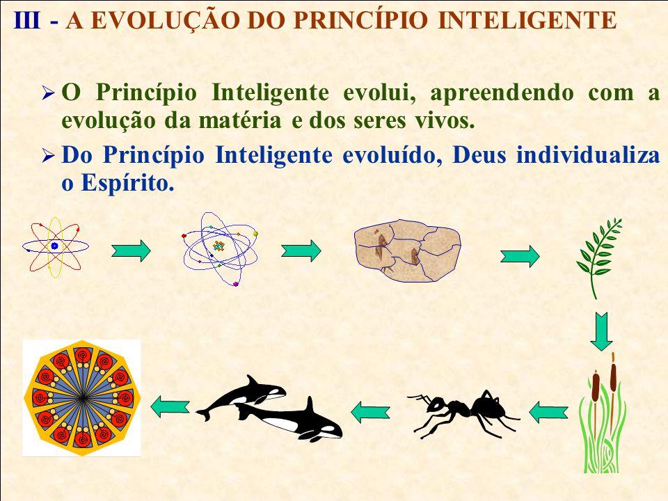 I - PRINCÍPIOS GERAIS DO UNIVERSO DEUS Inteligência Suprema, causa primária de todas as coisas. PRINCÍPIO MATERIAL Dá origem a todas as manifestações