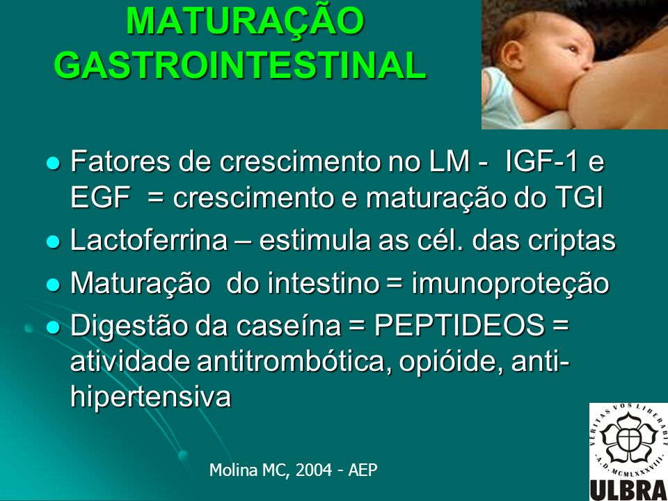 MATURAÇÃO GASTROINTESTINAL MATURAÇÃO GASTROINTESTINAL Fatores de crescimento no LM - IGF-1 e EGF = crescimento e maturação do TGI Fatores de crescimen
