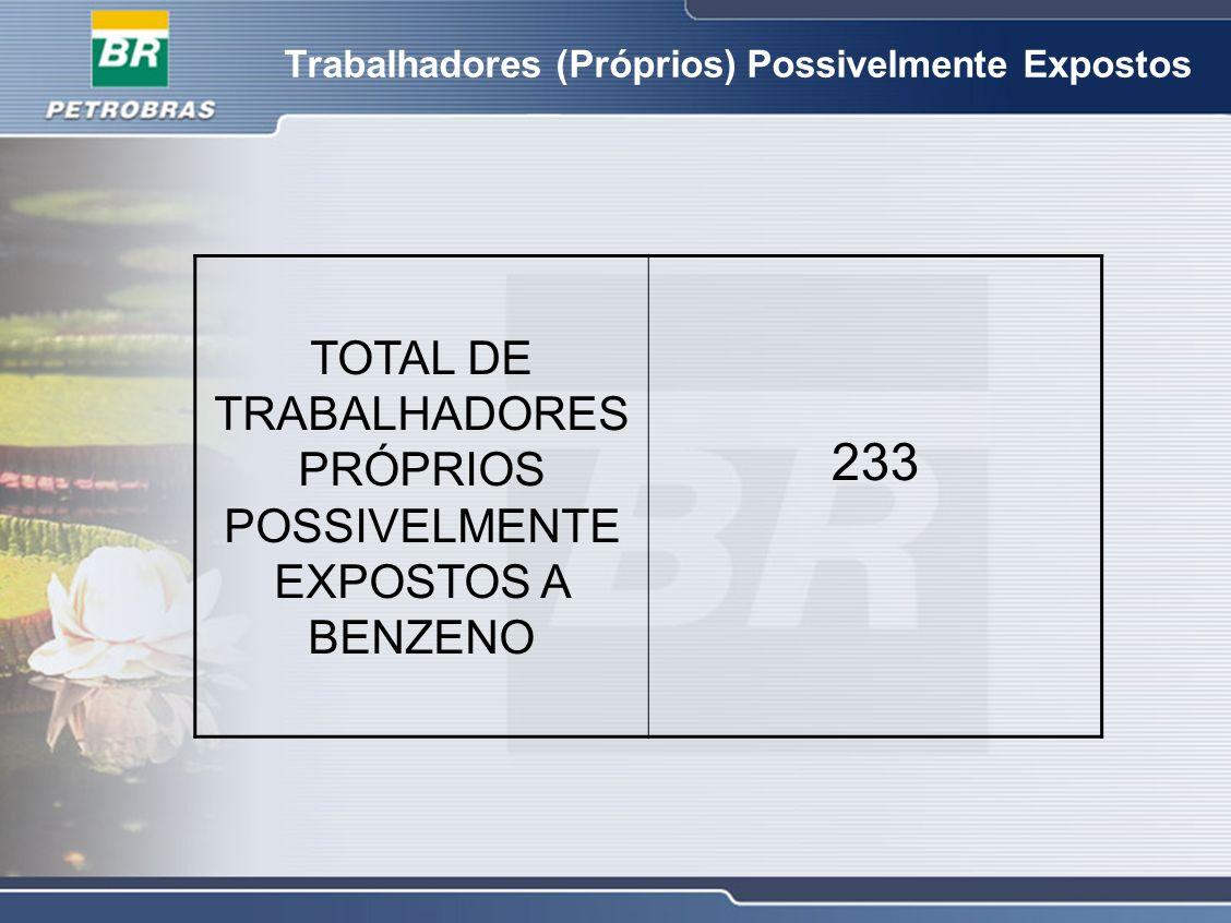 Trabalhadores (Próprios) Possivelmente Expostos TOTAL DE TRABALHADORES PRÓPRIOS POSSIVELMENTE EXPOSTOS A BENZENO 233