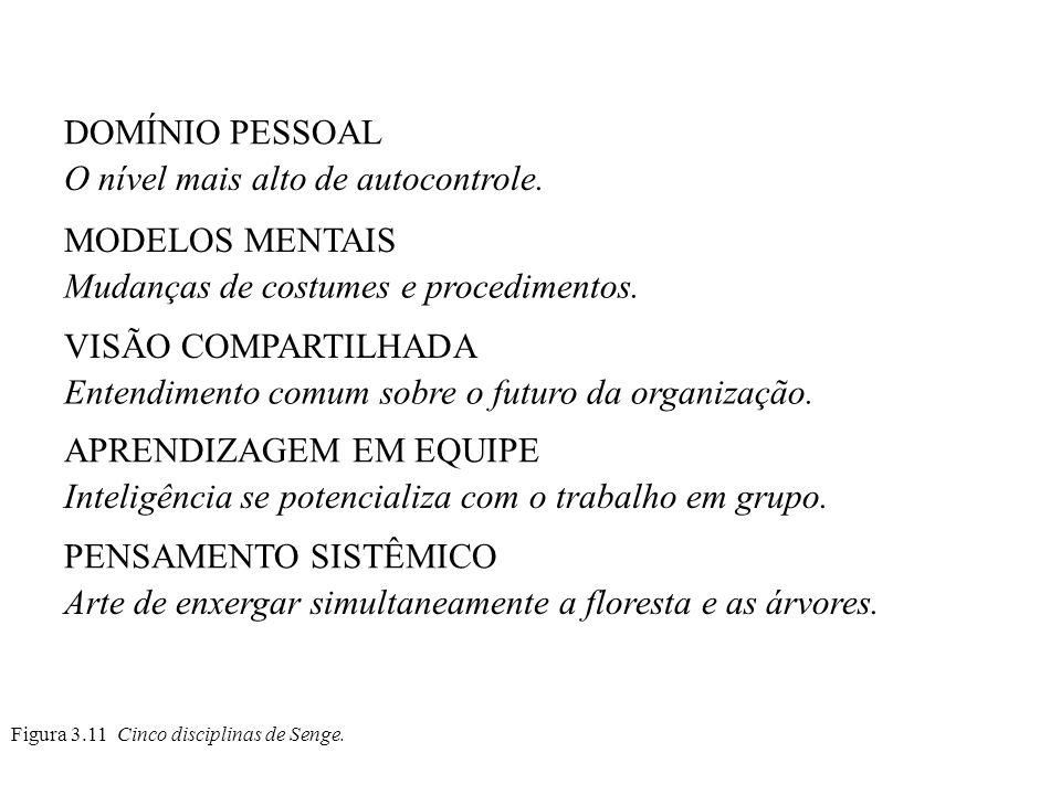 Figura 3.11 Cinco disciplinas de Senge. DOMÍNIO PESSOAL O nível mais alto de autocontrole. MODELOS MENTAIS Mudanças de costumes e procedimentos. VISÃO