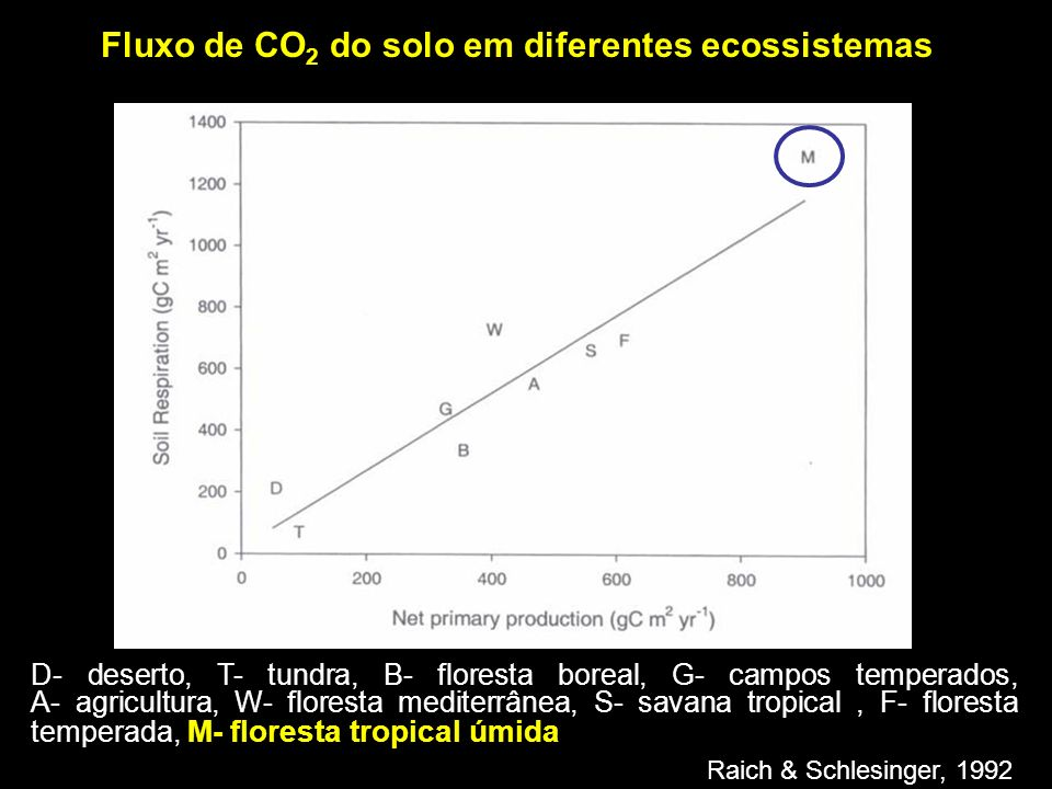 Justificativa - Covariância de vórtices turbulentos – Problemas em noites calmas - Fluxo de CO 2 do solo – maior fonte de CO 2 dos ecossistemas terrestres 84% de CO 2 emitido pela floresta (Meir et al., 1996) - Fluxo de CO 2 do solo = f(topografia) (Souza, 2004 & Chambers, 2003) - Grande variação das medidas de fluxos de CO 2 do solo