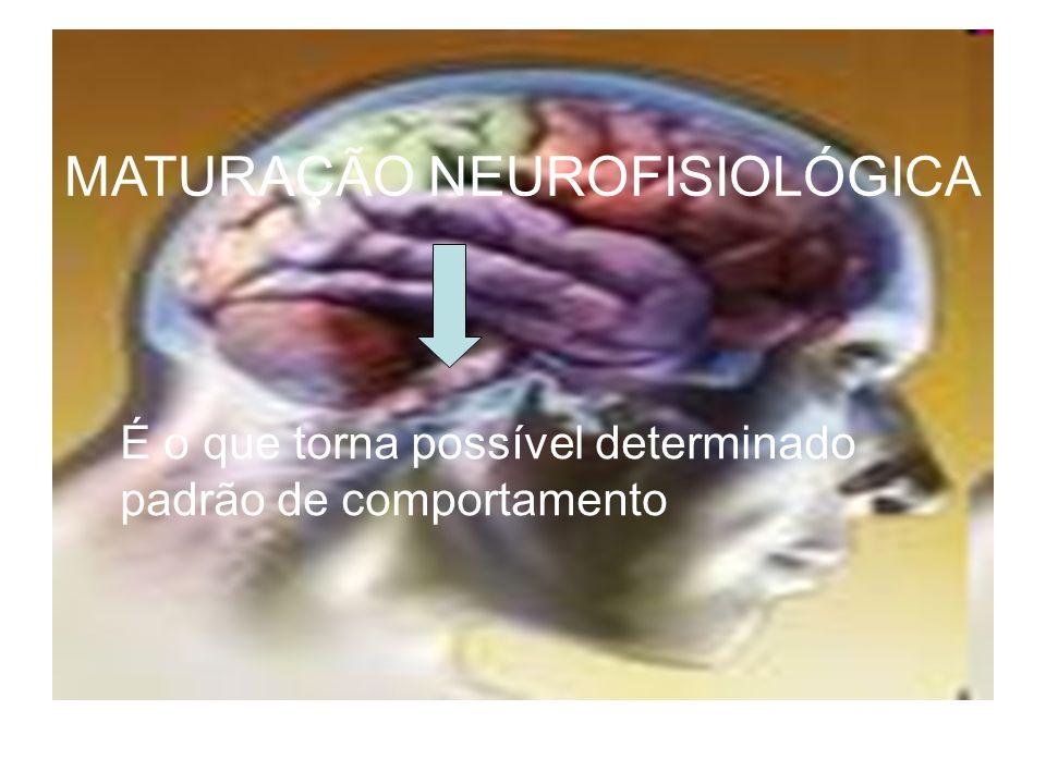 MATURAÇÃO NEUROFISIOLÓGICA É o que torna possível determinado padrão de comportamento