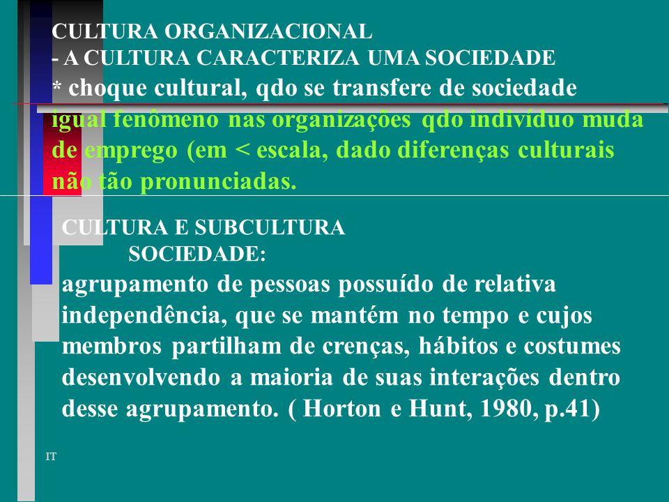 IT CULTURA ORGANIZACIONAL - A CULTURA CARACTERIZA UMA SOCIEDADE * choque cultural, qdo se transfere de sociedade igual fenômeno nas organizações qdo indivíduo muda de emprego (em < escala, dado diferenças culturais não tão pronunciadas.