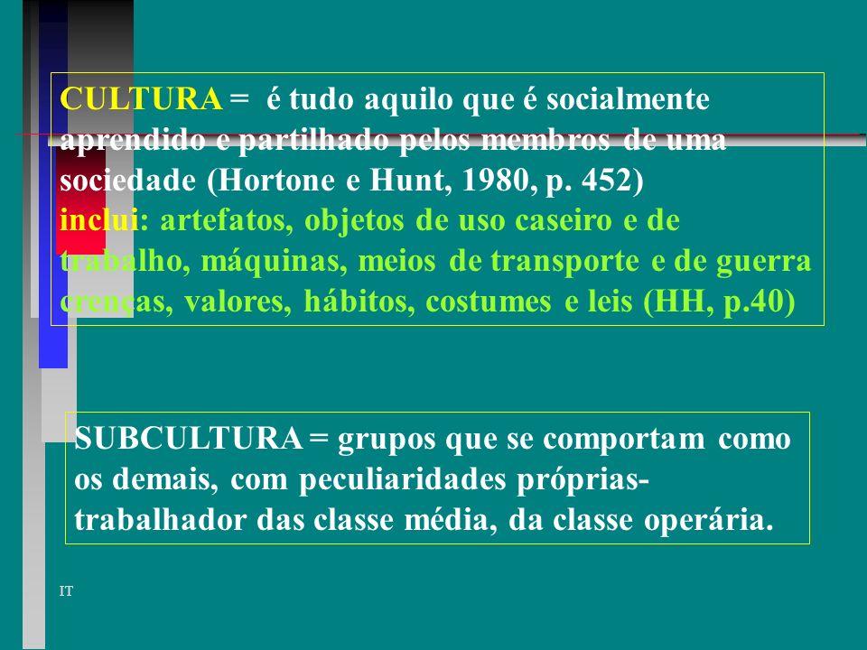 IT MORAL E ATITUDE FANATISMO EUFORIA ATITUDES + SATISFAÇÃO OTIMISMO COOPERAÇÃO COESÃO COLABORAÇÃO MORAL ELEVADO ATITUDES - INSATISFAÇÃO PESSIMISMO OPOSIÇÃO AGRESSÃO...