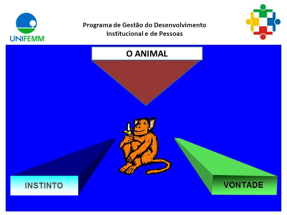 . Programa de Gestão do Desenvolvimento Institucional e de Pessoas INTELIGÊNCIA VONTADE SER HUMANO