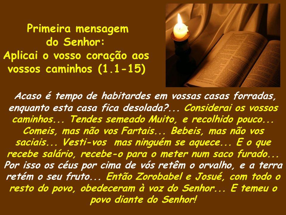 Primeira mensagem do Senhor: Aplicai o vosso coração aos vossos caminhos (1.1-15) Acaso é tempo de habitardes em vossas casas forradas, enquanto esta