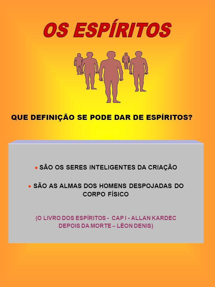 SÃO OS SERES INTELIGENTES DA CRIAÇÃO SÃO AS ALMAS DOS HOMENS DESPOJADAS DO CORPO FÍSICO (O LIVRO DOS ESPÍRITOS - CAP I - ALLAN KARDEC DEPOIS DA MORTE