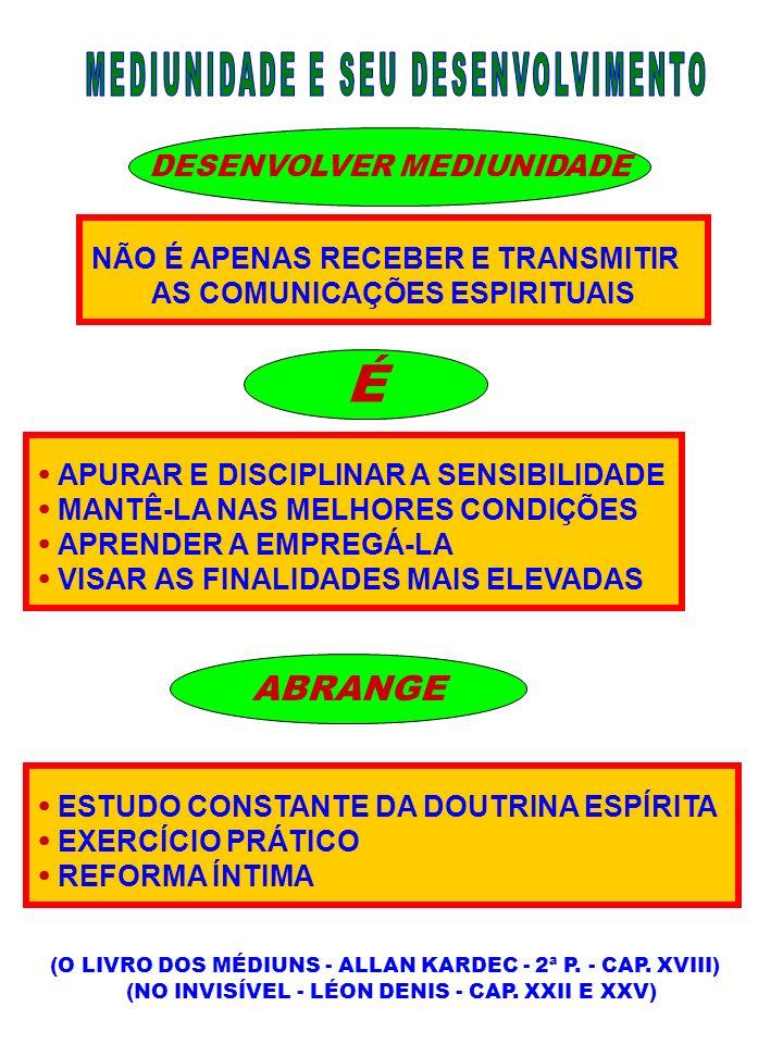 CONSEQÜÊNCIAS DA OBSESSÃO ( OBSESSÃO/DESOBSESSÃO - SUELY C.