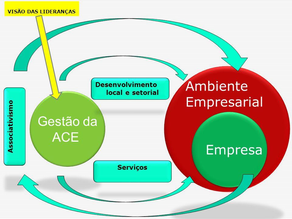 Empresa Ambiente Empresarial Gestão da ACE Desenvolvimento local e setorial Serviços Associativismo VISÃO DAS LIDERANÇAS