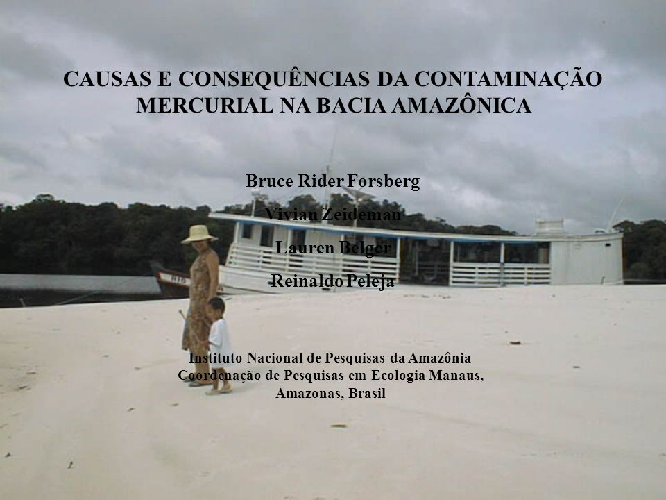 CAUSAS E CONSEQUÊNCIAS DA CONTAMINAÇÃO MERCURIAL NA BACIA AMAZÔNICA Bruce Rider Forsberg Vivian Zeideman Lauren Belger Reinaldo Peleja Instituto Nacio