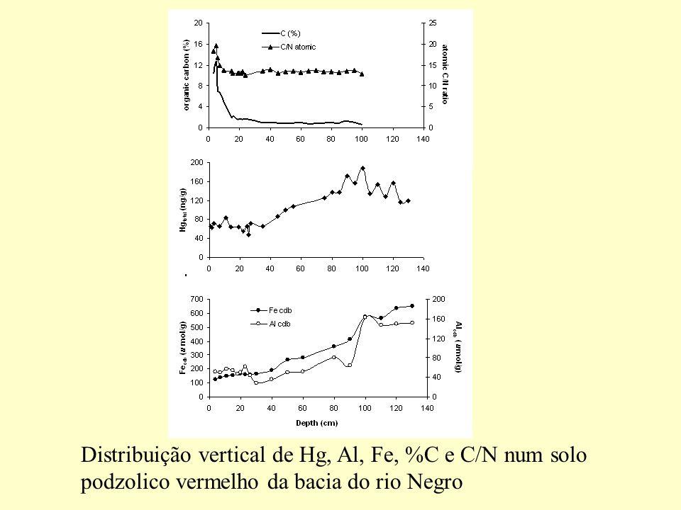 Distribuição vertical de Hg, Al, Fe, %C e C/N num solo podzolico vermelho da bacia do rio Negro