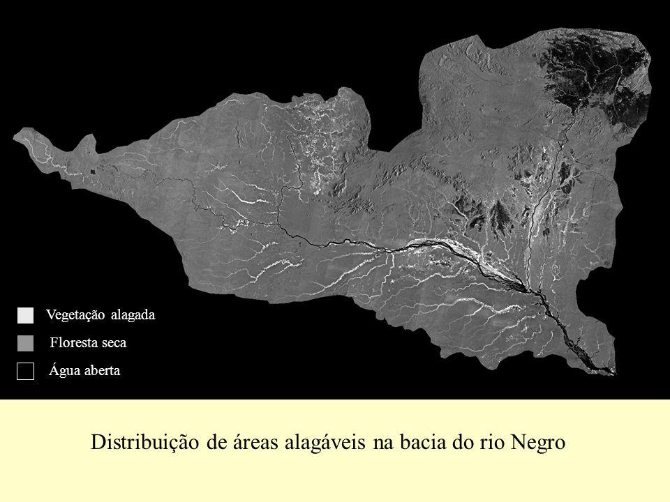 Distribuição de áreas alagáveis na bacia do rio Negro Vegetação alagada Floresta seca Água aberta