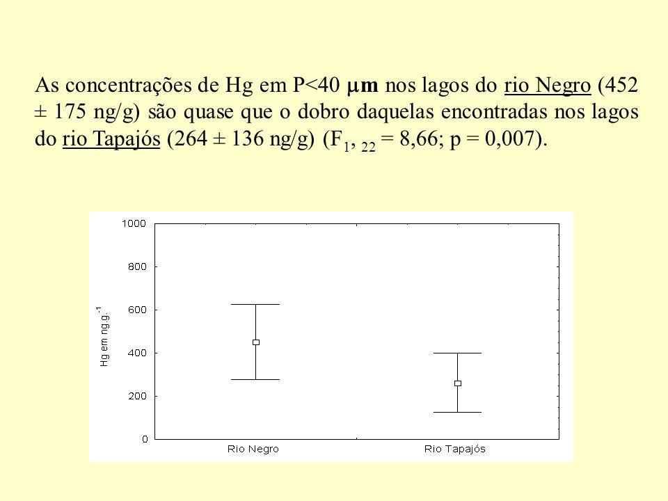 As concentrações de Hg em P<40 m nos lagos do rio Negro (452 ± 175 ng/g) são quase que o dobro daquelas encontradas nos lagos do rio Tapajós (264 ± 13