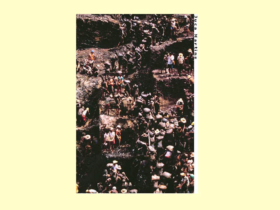 Contribuição potencial dos solos da bacia do rio Negro garimpos para o estoque de Hg nos Estoque de mercúrio no solo(0-60cm) = 44.000 tons Contribuição máxima do garimpo = 2.000 tons ou 5% Conclusão: o mercúrio e predominantemente de origem natural