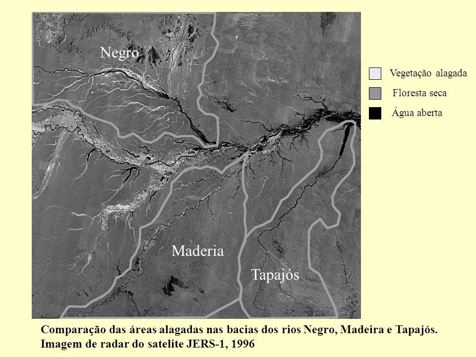 Comparação das áreas alagadas nas bacias dos rios Negro, Madeira e Tapajós. Imagem de radar do satelite JERS-1, 1996 Vegetação alagada Floresta seca Á