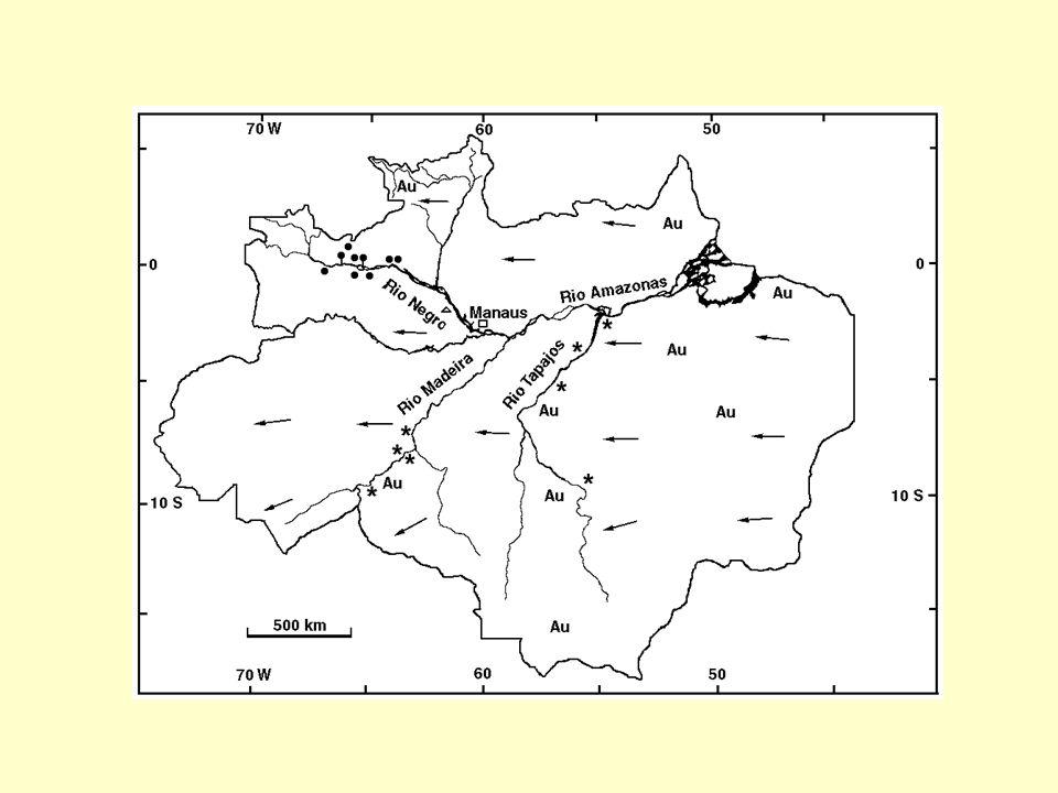 Hg total em na fração particulada >40 m