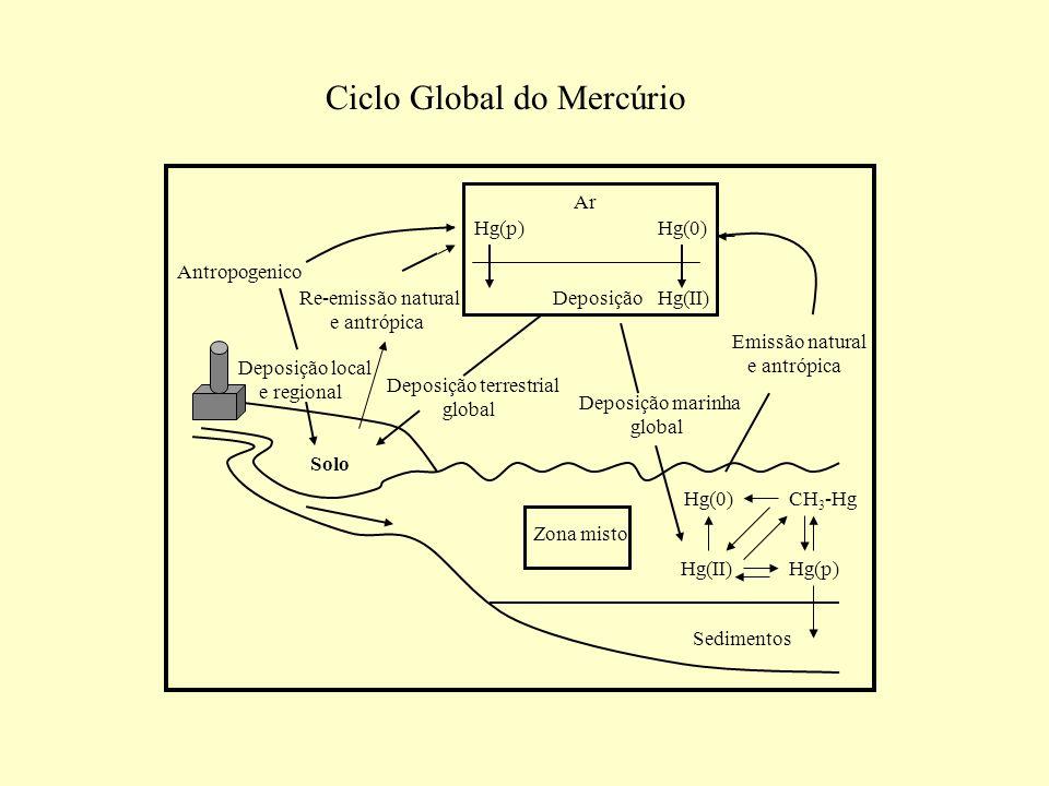 Antropogenico Hg(p)Hg(0) Ar DeposiçãoHg(II) Hg(p) Hg(0)CH 3 -Hg Deposição local e regional Re-emissão natural e antrópica Deposição terrestrial global