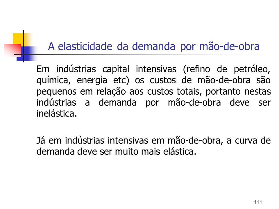 111 A elasticidade da demanda por mão-de-obra Em indústrias capital intensivas (refino de petróleo, química, energia etc) os custos de mão-de-obra são