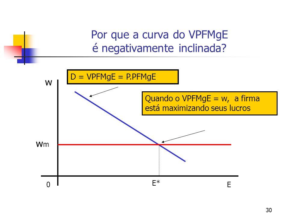 30 Por que a curva do VPFMgE é negativamente inclinada? E0 w D = VPFMgE = P.PFMgE E* wmwm Quando o VPFMgE = w, a firma está maximizando seus lucros