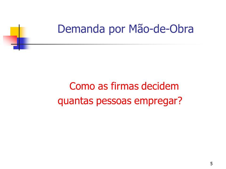156 A demanda por mão-de-obra (modelo estático): um apêndice matemático [Hamermersh (1993)] E/ w = [1/ (L*)] < 0 Esta condição nos leva a inferir a existência de uma curva de demanda negativamente inclinada.